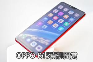 OPPO R15图赏